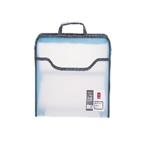 Document Case in Various Colors